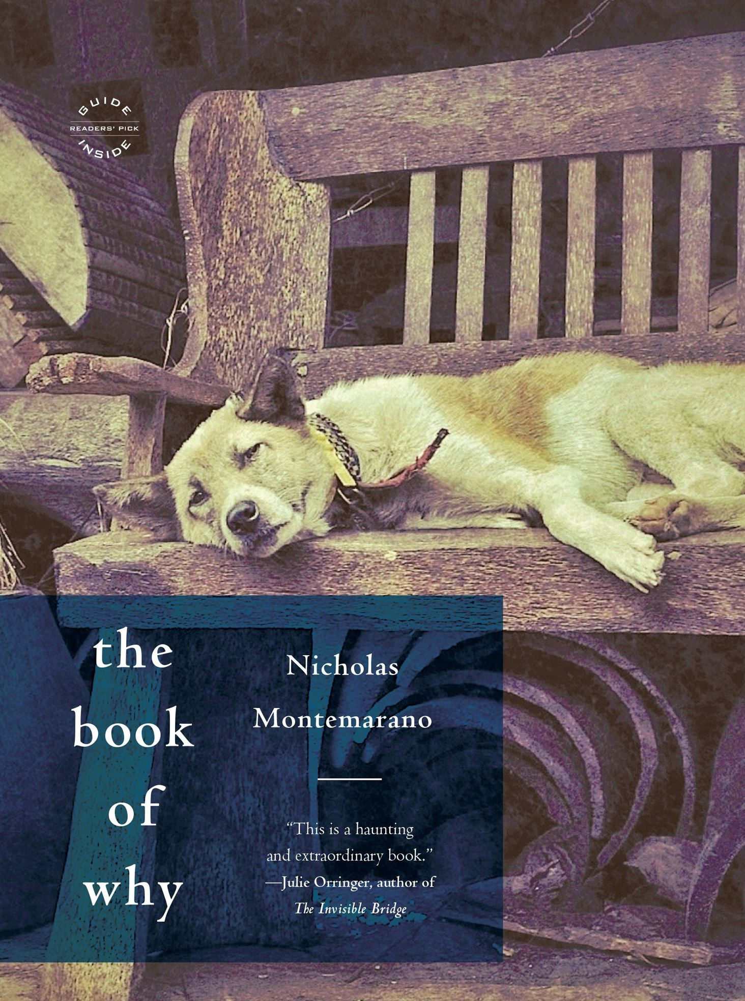 "bookWhy-3 Ralph the female German sShepherd on the cover of ""The Book of Why"" by Nicholas Montemarano."