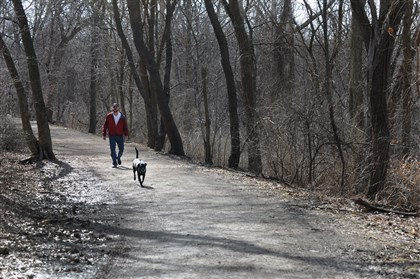 Frick Park dog walker A man and his unleashed dog take a walk around the trails in Frick Park in April 2014.