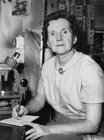 "Rachel Carson 1963 The author of ""The Silent Spring"" in 1963."