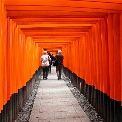 Fushimi-inari Shrine in Kyoto The vermilion torii gates of the Fushimi-inari Shrine in Kyoto, Japan.