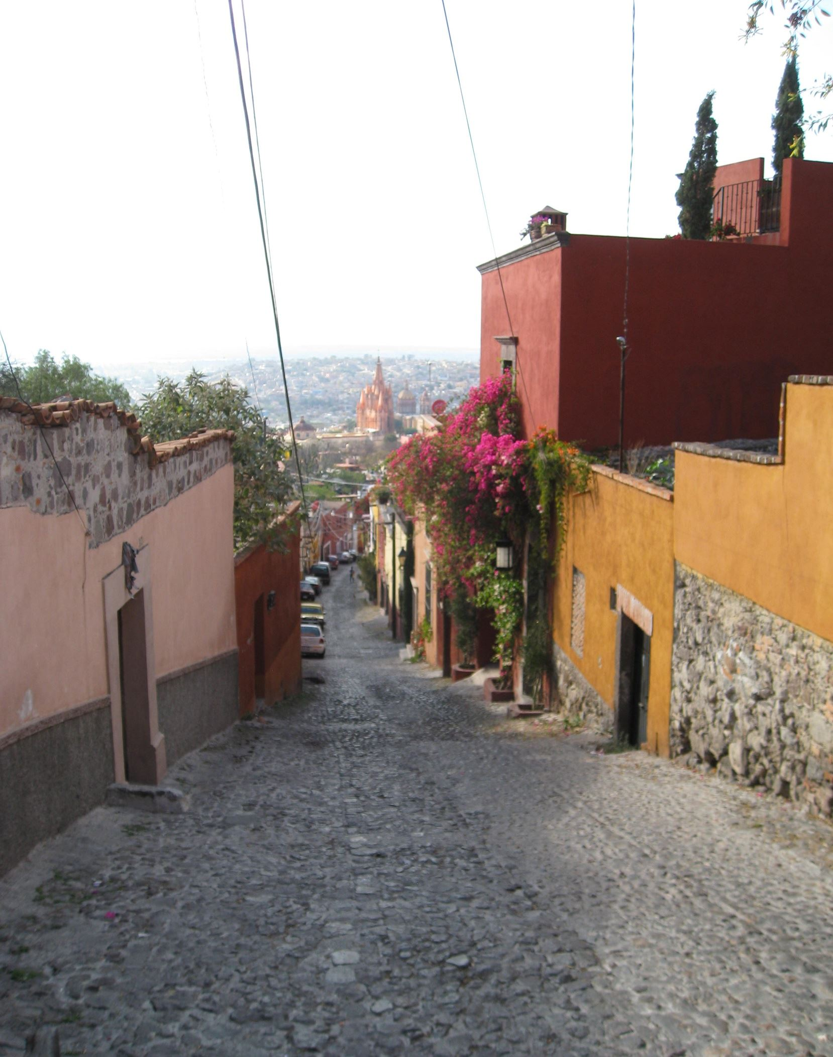 20140425hofood7132-1 View of San Miguel de Allende.