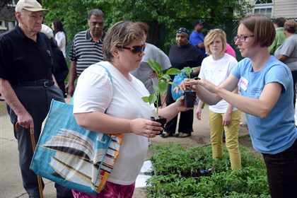 20140520PlantsLocal01 Christi Zielmanski, left, 40, of Crafton Heights receives tomato and green pepper plants from Jaralyn Beach of the Pittsburgh Food Bank on Tuesday at Pittsburgh Langley High School in Sheraden.