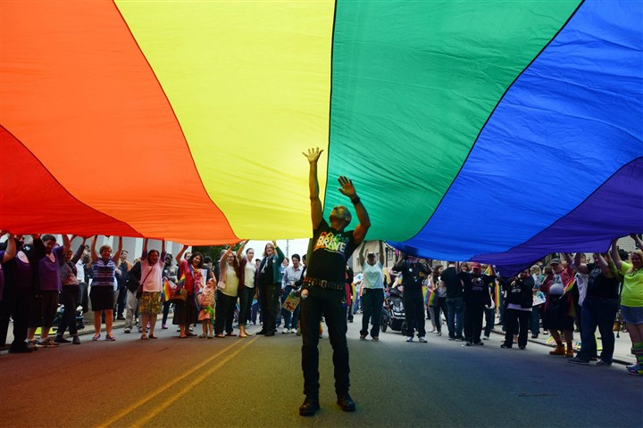 20140520MWHequalityLocal09-4 Richard Parsakian of Shadyside lifts up from underneath a large pride banner to celebrate a federal judge ruling Pennsylvania's ban on same-sex marriage unconstitutional held on Ellsworth Avenue in Shadyside on Tuesday.