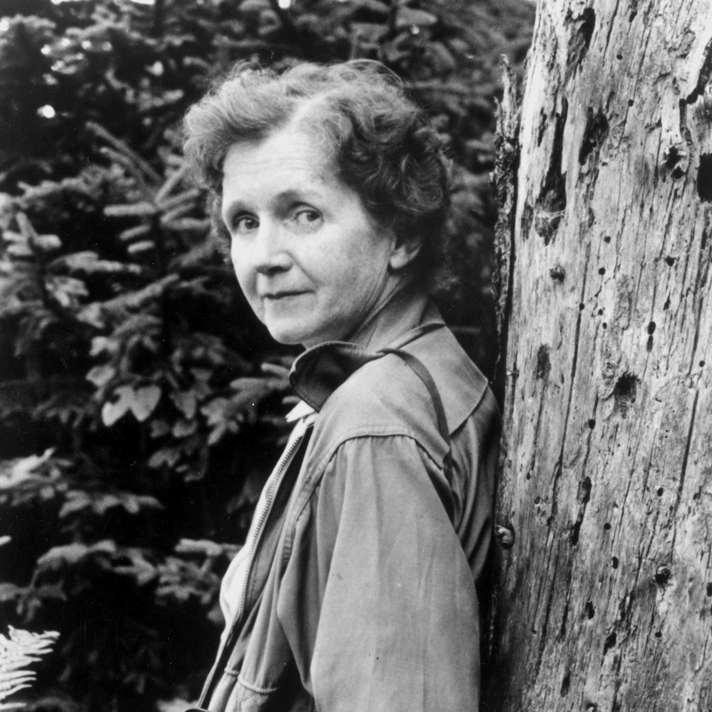 Rachel carson author helps mark special day pittsburgh for The carson