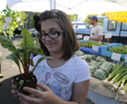 "2013rdwhoocooksfarm8us00kgc Zoe Moran, 11, of Arlington holds up a red swiss chard plant she selected from the ""Who Cooks for You Farm,"" from New Bethlehem, Pa., on the opening day of the CitiParks Farmers' Market in East Liberty."