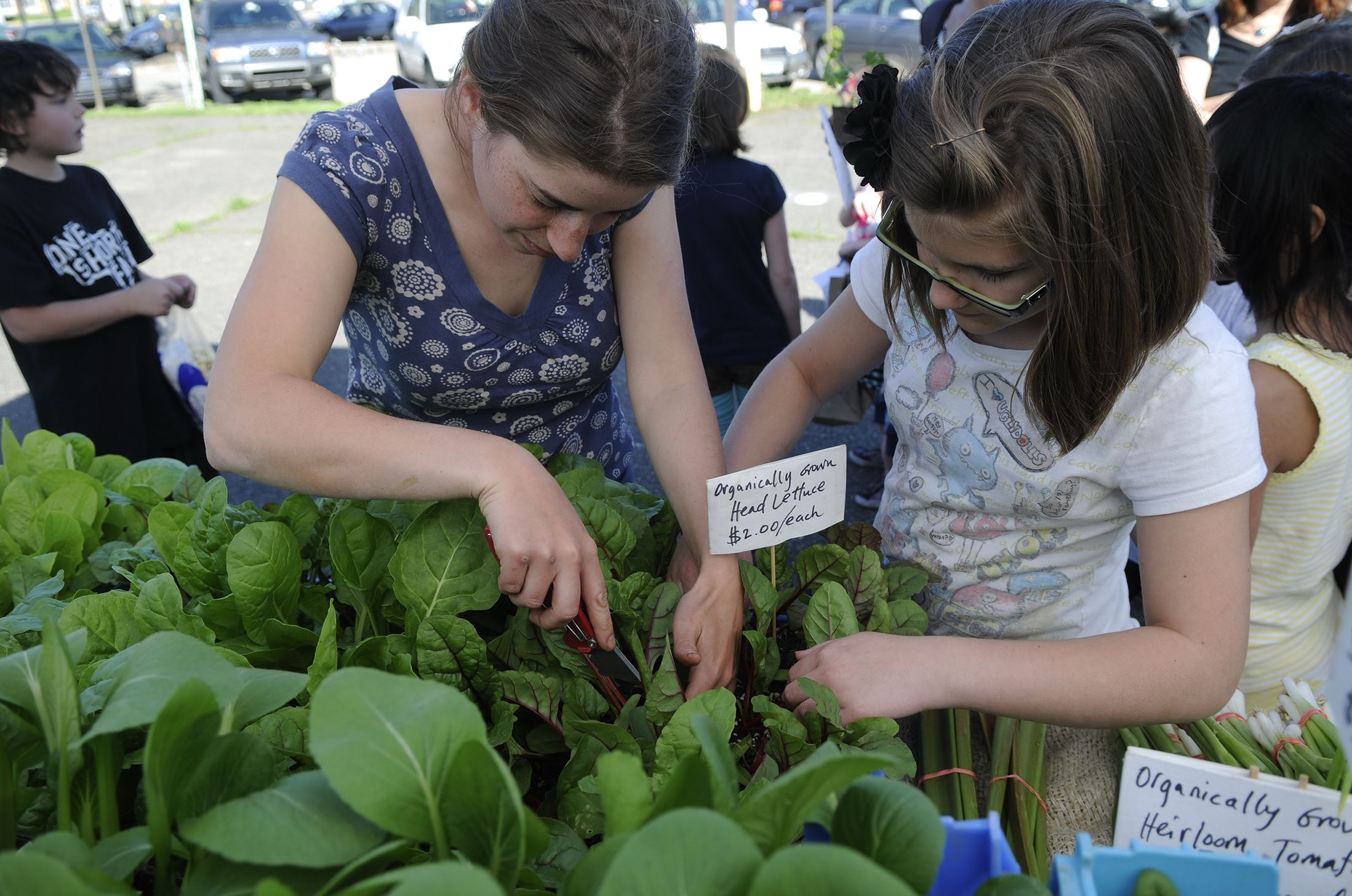 "2013rdwhoocooksfarm8us00kgi-2 Farmer Gillian Goldberg, left, helps Zoe Moran, 11, of Arlington pick out a Swiss chard plant at the ""Who Cooks for You Farm"" stand on the opening day of the CitiParks Farmers' Market in East Liberty."
