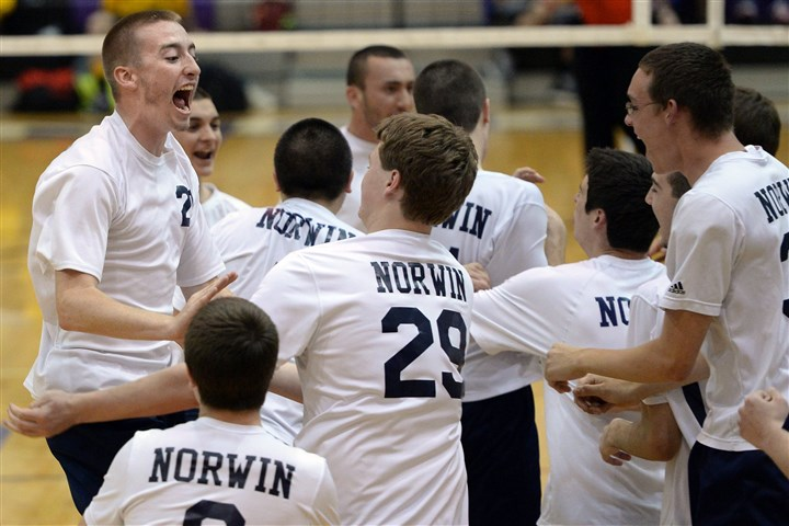 20140520mfvolleysports1.jpg Norwin teammates celebrate after defeating Fox Chapel last week in the WPIAL volleyball semifinals.