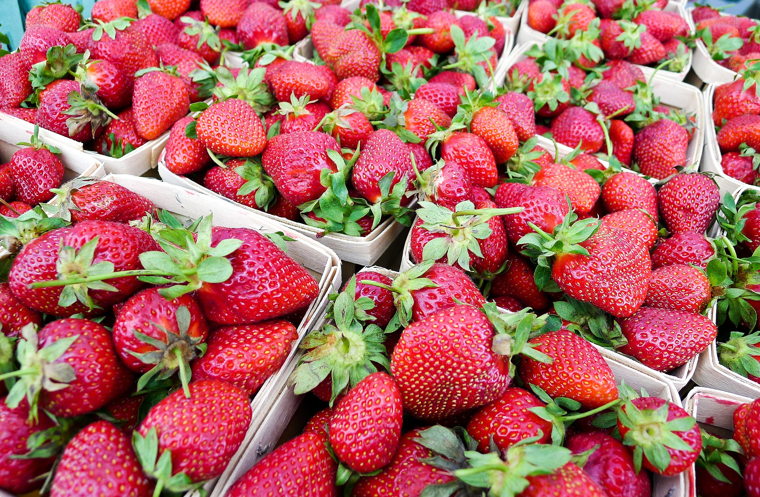 P1230755-2 Simmons Farm was selling strawberries from a partner farm in Ohio that you could smell from several feet away at opening day at the Upper St. Clair Farmers Market on May 29.