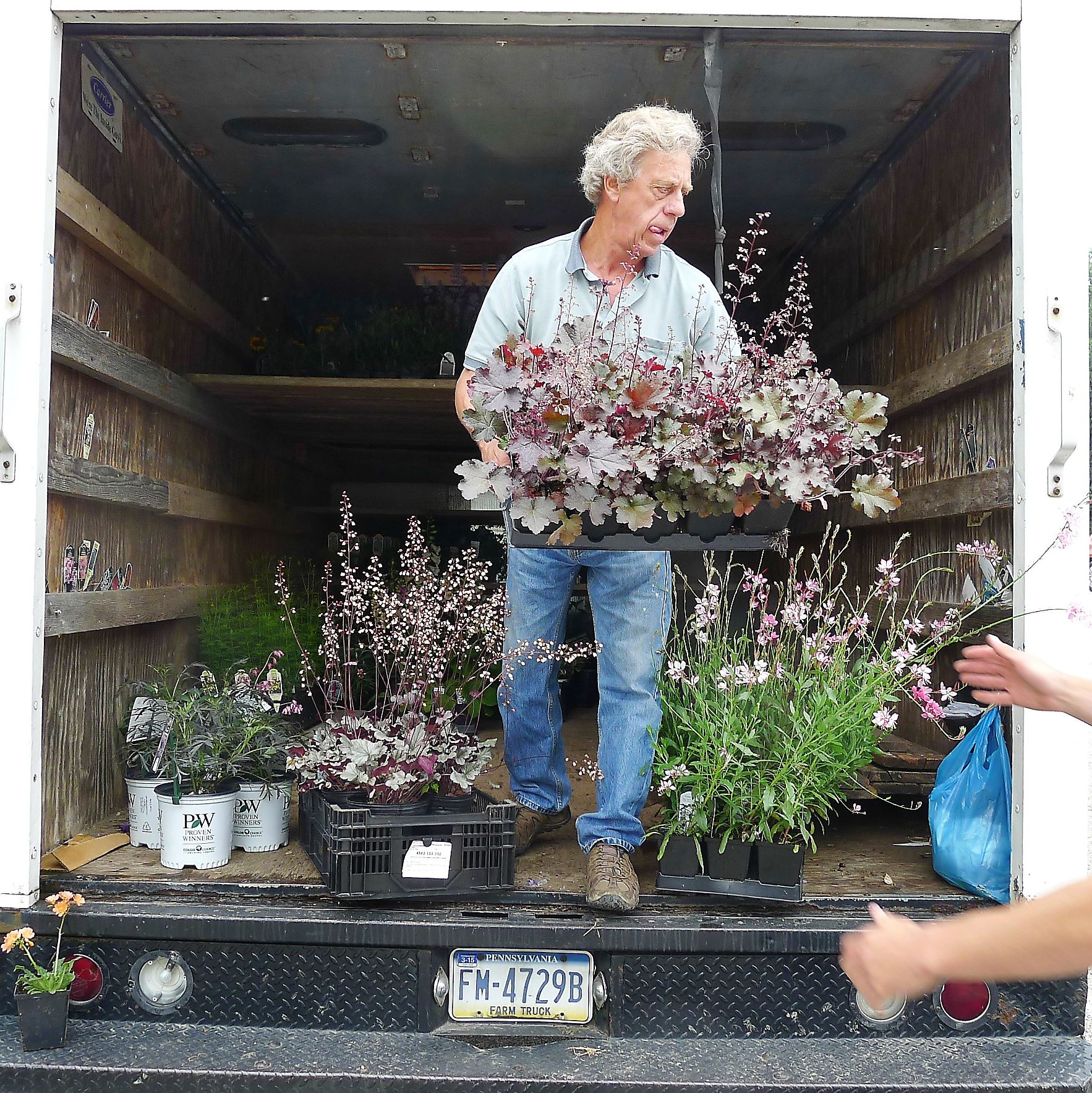 P1230772-5 Don Witt unloads his Witt's Perennial Nursery truck with the help of his son, Ryan, at the opening day at the Upper St. Clair Farmers Market on May 29.