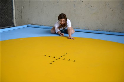 20140603MWHmarblesLocal01 Fourteen-year-old Kelsey Baran, of McCandless, practices for her trip to the National Marbles Championship on June 3 underneath the Bloomfield Bridge.