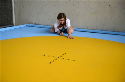 20140603MWHmarblesLocal01 Fourteen-year-old Kelsey Baran, of Allison Park, practices for her trip to the National Marbles Championship underneath the Bloomfield Bridge on Tuesday, June 3, 2014.