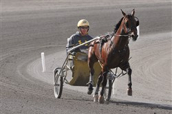 Trainer Ron Burke works Full Moon on the track at the Meadows, June 4, 2014. Burke, in May 2014, became the first North American trainer in harness racing history  to accumulate 100-million dollars in total purses.