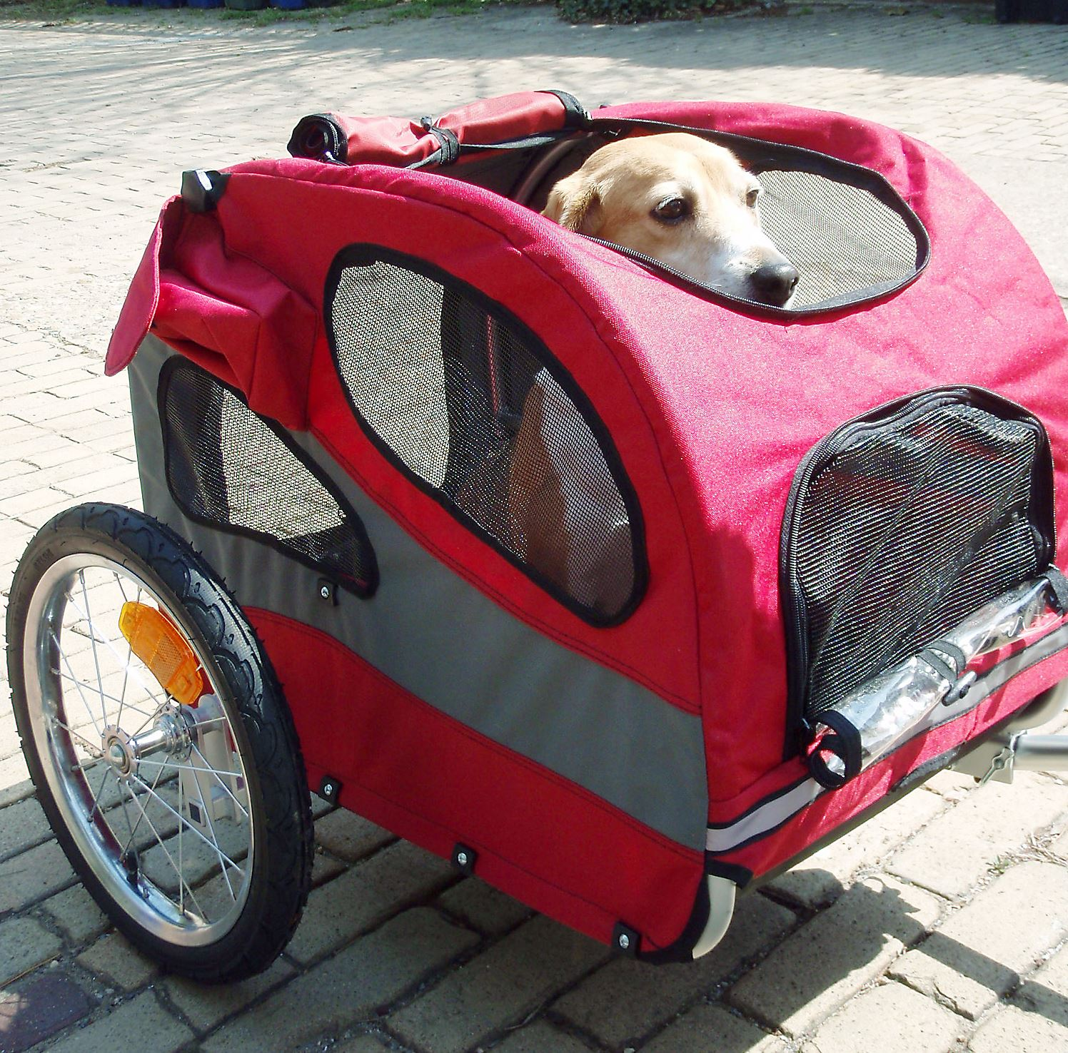 Taking Your Pet In A Bike Trailer Shouldn T Be A Drag Pittsburgh