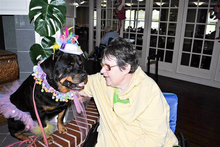 wdogs0612D Becky Carlisle with therapy dog Anastasia at Broadmore Senior Living in South Fayette.