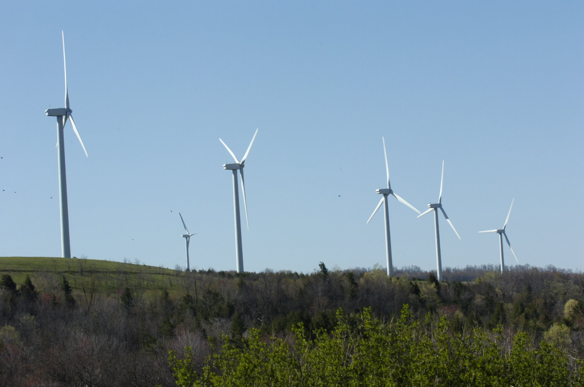 Wind turbines are used to produce electricity near Somerset, Somerset County. Pennsylvania lawmakers have commissioned a report on the impact of wind farms in the state.