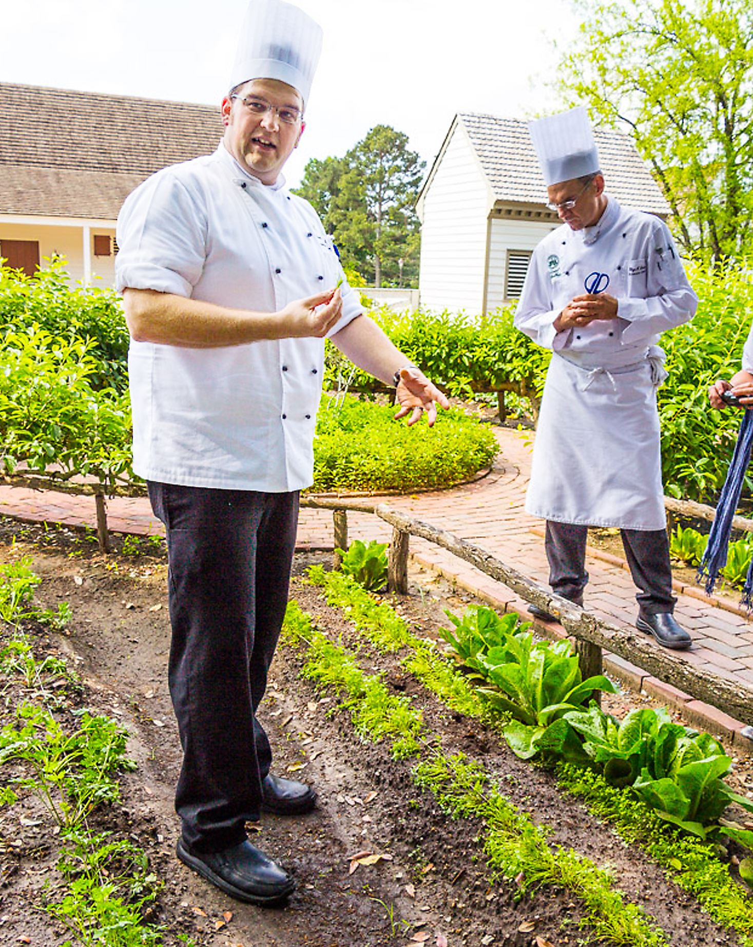 20140616hochefsAfood Chef Travis Brus and Chef Rhys Lewis point out ingredients in Kings Arms Garden in Williamsburg, Va.