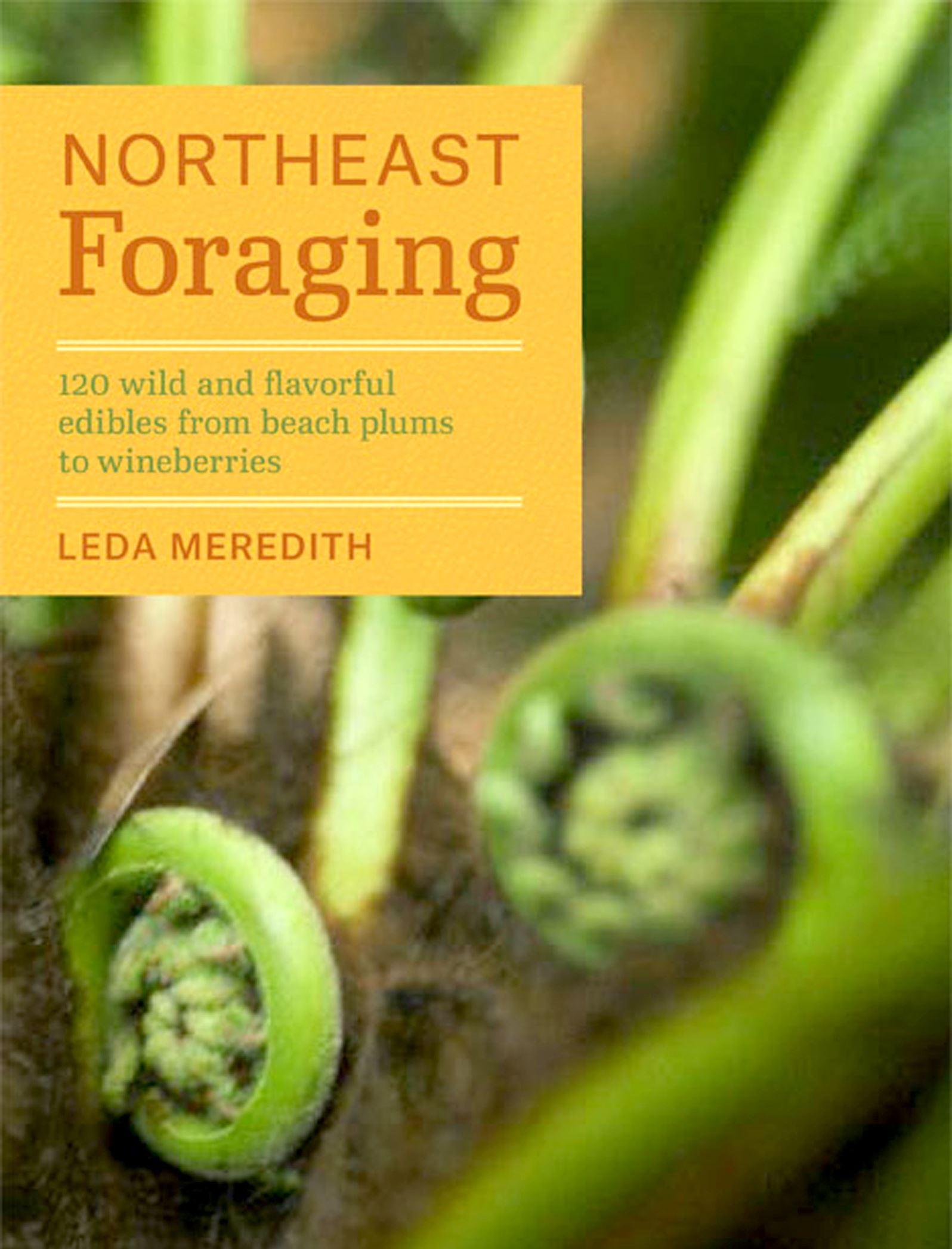 "20140619hoforagingfood ""Northeast Foraging"" by Leda Meredith."