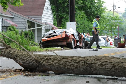 "Tree falls on car in Conemaugh Conemaugh police Chief Louis ""Pete"" Barclay surveys the scene after a tree toppled onto a car, killing two children, 6 and 8, inside."
