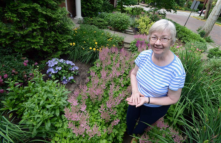 Dorothy Rescher is surrounded by astilbe, hydrangia, vinca and lace cap Dorothy Rescher is surrounded by astilbe, hydrangia, vinca and lace cap in the front garden of her home in Swissvale.