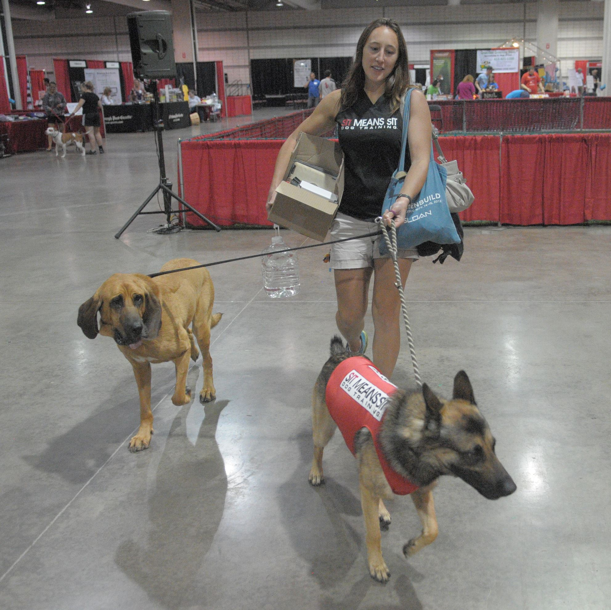 20140628ttPetMag (4)-3 Lisa Pierce of Sit Means Sit Dog Training in Brentwood arrives at the Steel City Pet Expo at the David L. Lawrence Convention Center Downtown Pittsburgh with Copper, a bloodhound (L), and Bentley, a shepherd mix (R).