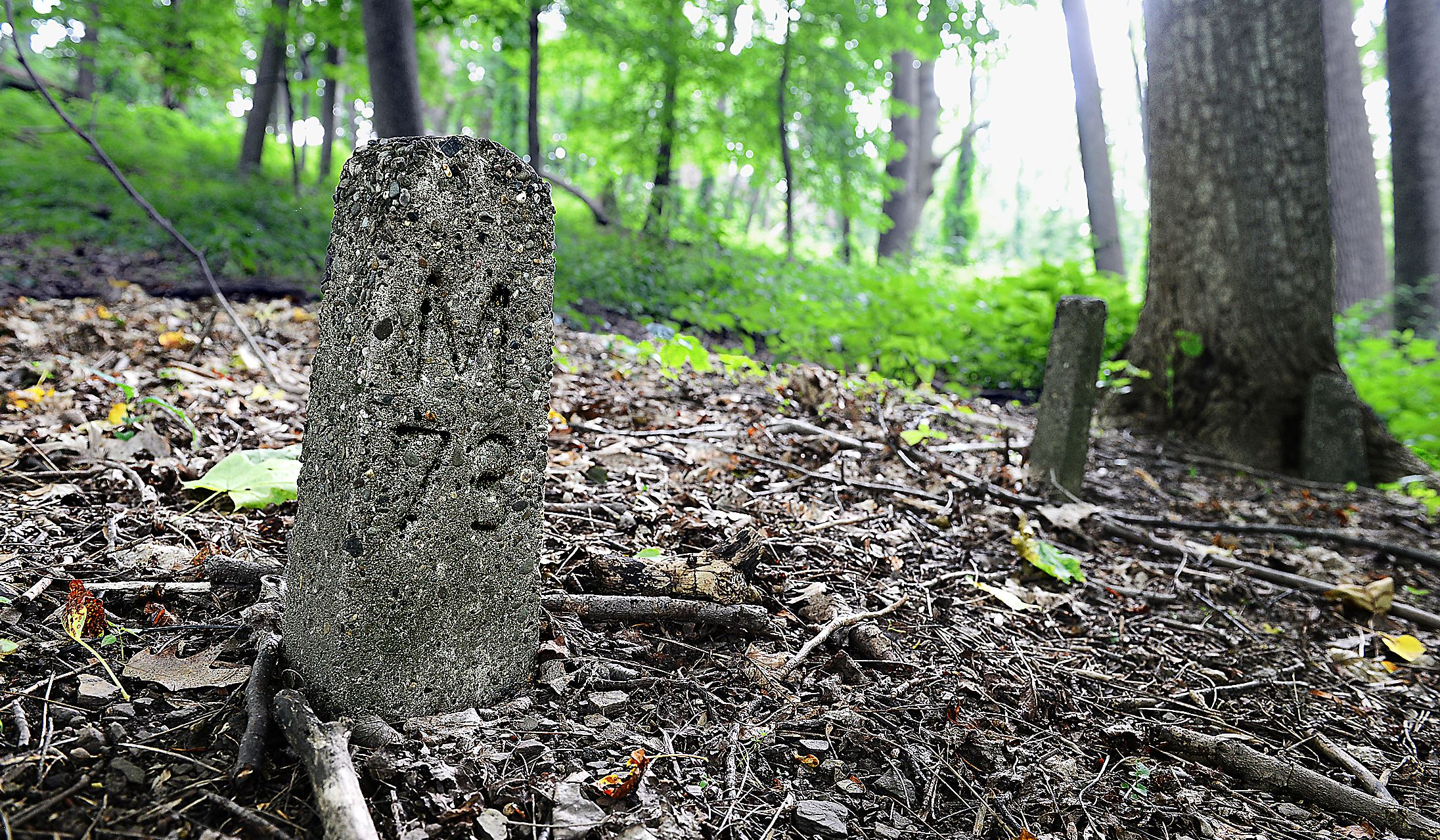 Isolated in the woods of the former Dixmont State Hospital property in Kilbuck are the crumbling concrete markers of more than 1,300 graves of patients who died from 1863 through 1937.