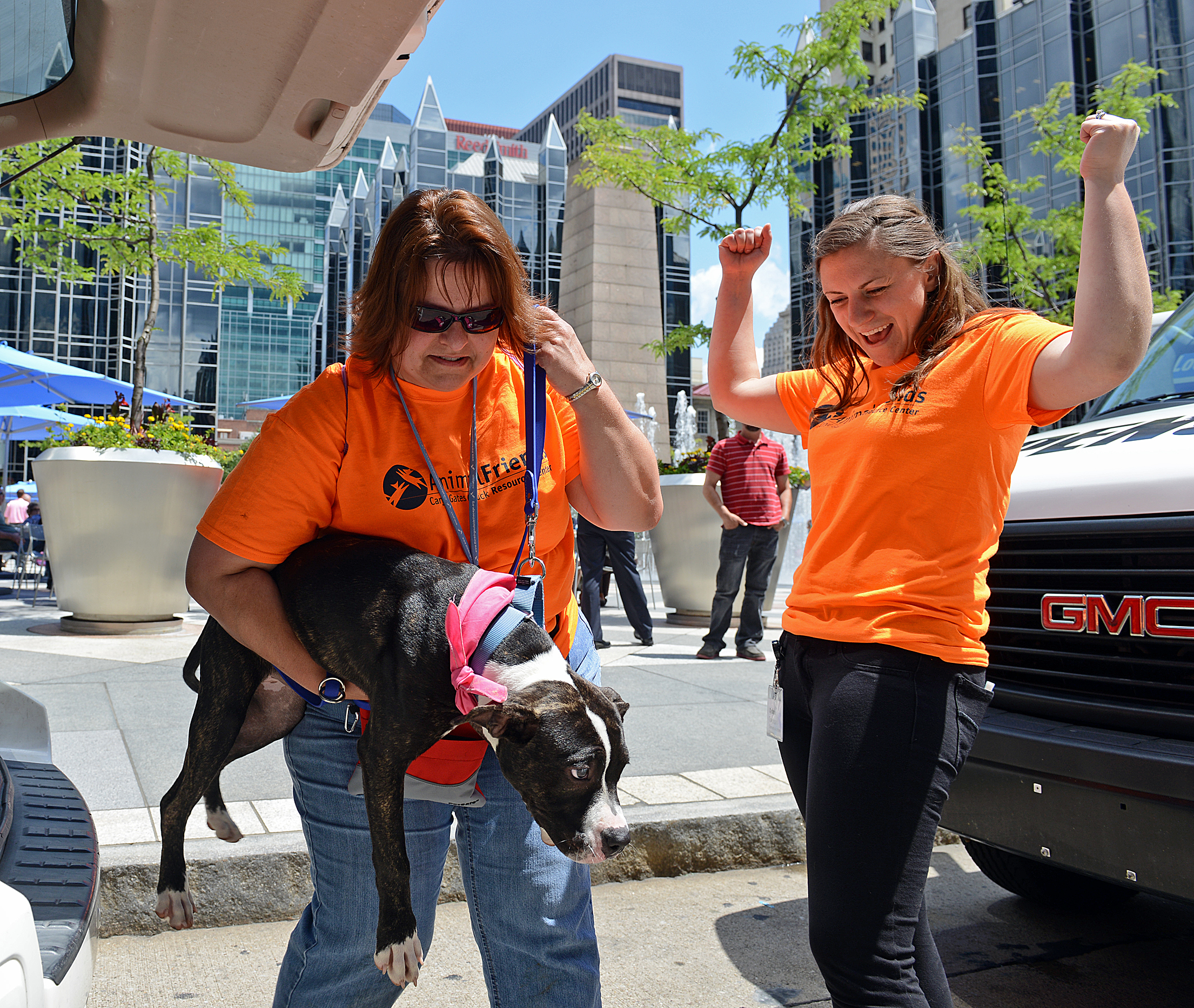 Becky DiLucia, left, and Cyndee Traversari, both of Animal Friends, unload Zeva, a seven-month-old pit bull mix, one of 20 dogs brought to PPG Place and Market Square as part of
