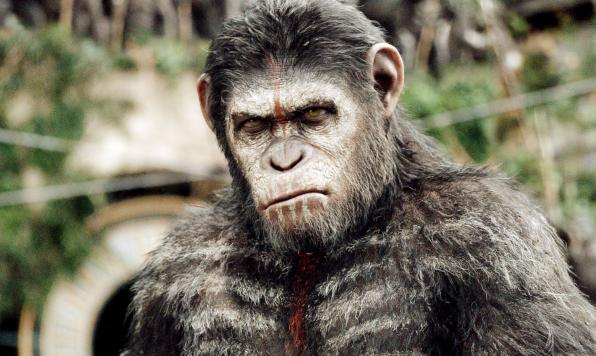 Personality ... MBTI Enneagram Caesar (The Planet of the Apes) ... loading picture