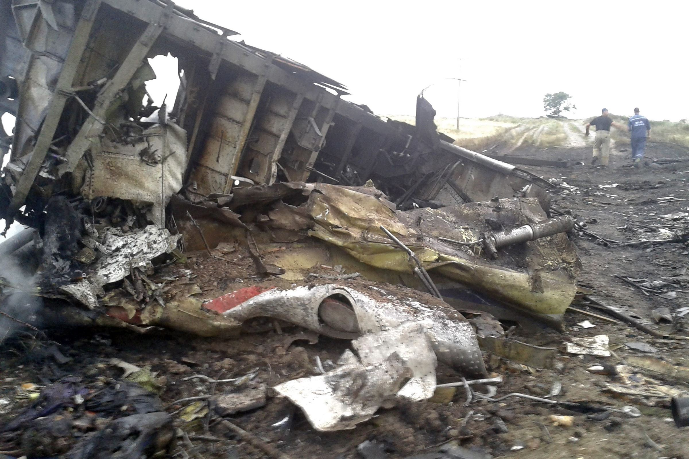 The site of a Malaysia Airlines Boeing 777 plane crash today is seen in the settlement of Grabovo in the Donetsk region.