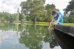 Adison Zahner of Leetsdale catches guppies in a cup in Lake Elizabeth in July at Allegheny Commons Park on the North Side.