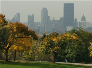 Schenley Park with the city's skyline in the background.