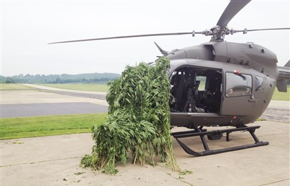HelicopterMarijuana A National Guard helicopter is shown with some of the marijuana plants seized this week in Washington County.