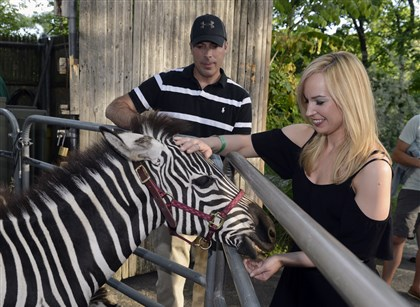 20140725bwZooSeen11-11 T.K. Kelley and Leah Krause with a Grant's Zebra.