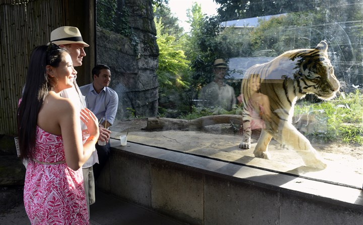 20140725bwZooSeen10-10 Anna Zavala, and Spencer Umstead check out the Amur tiger.