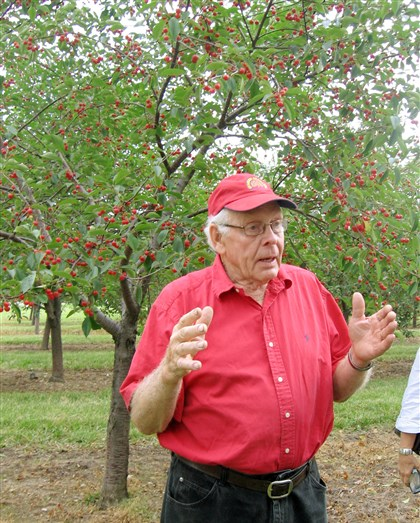 20140729howiscbfood Dale Seaquist, owner of Seaquist Orchards in Sister Bay, Wisc., discusses this season's tart cherry crop.