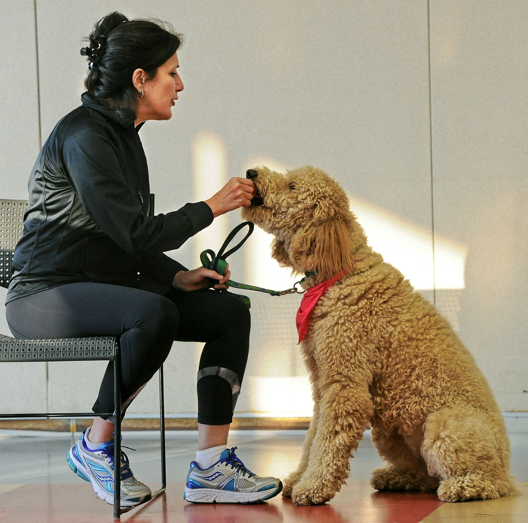 Liz Sullivan, left, gives Maggi a treat during obedience drills at the WPA Humane Society Canine Good Citizen class, the forerunning class to the therapy dog certification.