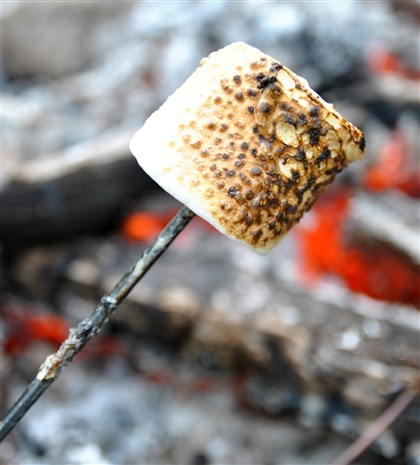 roastedmarshmallow.jpg A s'more starts with a toasted marshmallow.
