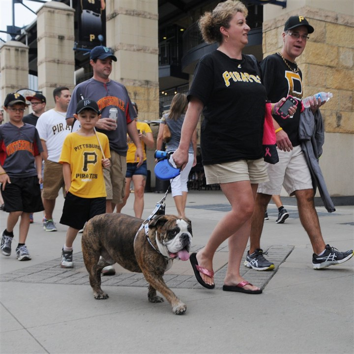 PNC Park Pup Night Heather Pencak, left, and her husband, Joe, of New Kensington walk their English bulldog, Champski, toward the gate at PNC Park Tuesday. The Pencaks and Champski were among the many pet owners and pets who visited Pup Night at PNC Park Tuesday.