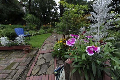 20140807CMGardenMag006-5 The backyard of Eric D'Ambrogi's home in Edgewood.