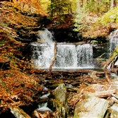 "The main attraction in Ricketts Glen State Park in northeastern Pennsylvania is hiking the Falls Trail, a 7.2-mile loop that follows along most the park's 22 beautiful waterfalls. The park's crown jewel is the ""wedding cake"" Ganoga Falls, which descends 94 feet in a series of small steps."