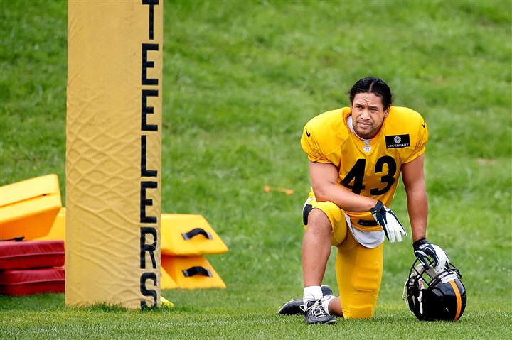 "Steelers safety Troy Polamalu  Steelers safety Troy Polamalu - ""We're lucky last week wasn't Week 1."""