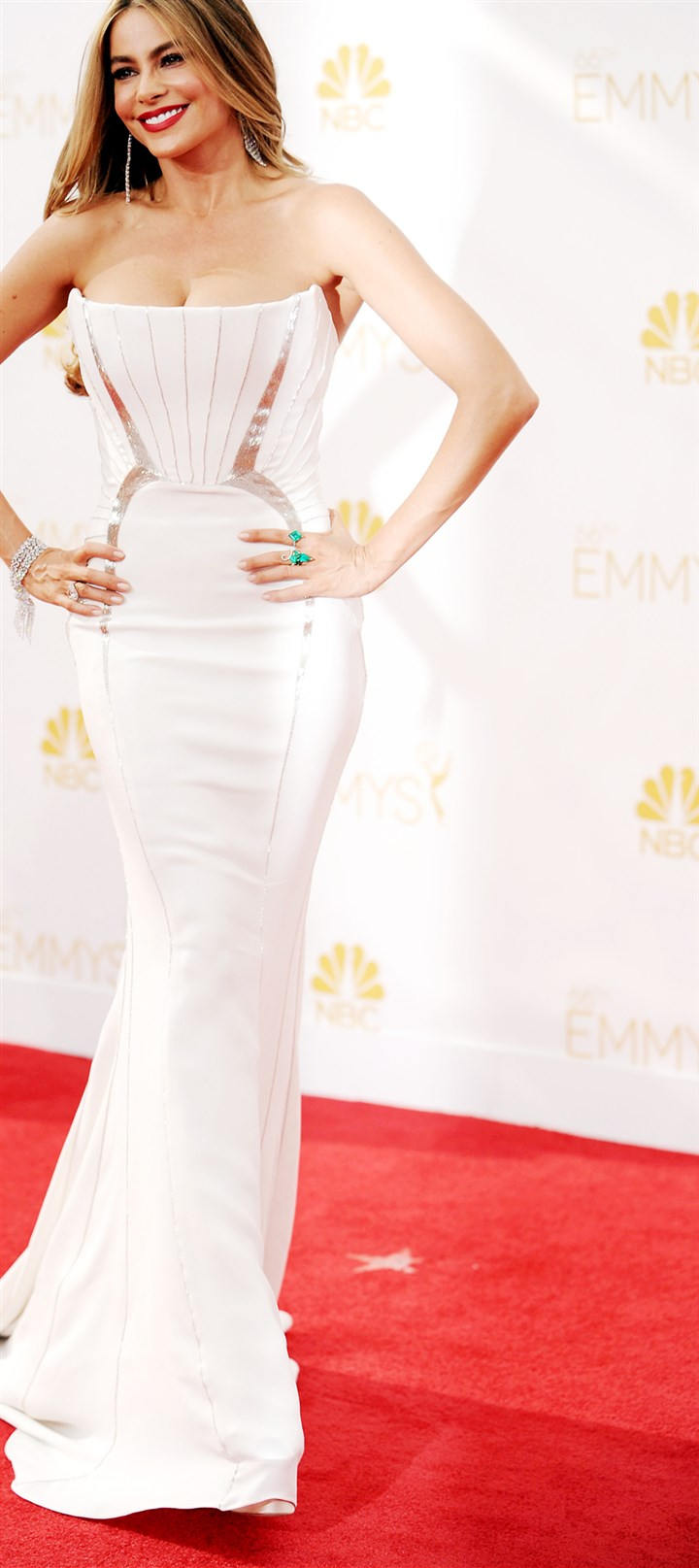 2014 Primetime Emmy Awards - Arrivals Sofia Vergara arrives at the 66th Annual Primetime Emmy Awards.