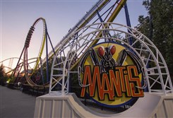 The Mantis at Cedar Point.
