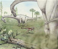 This rendering by Mark Klingler shows two Dreadnoughtus schrani menacing a much smaller meat-eating dinosaur.