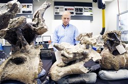 In this photo taken on Aug. 26, paleontologist Kenneth Lacovara works in a lab near a section of vertebrae from Dreadnaughtus schrani at Drexel University in Philadelphia. Scientists hope the unusually well-preserved bones of the immense dinosaur will help reveal secrets about some of the largest animals ever to walk the Earth.