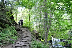 Hikers on the falls trail at Ricketts Glen State Park in Benton, Pa., where there are climbs up and down hundreds of stone steps.
