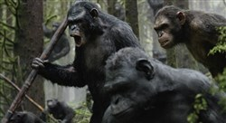"Koba (Toby Kebbell) leads a battle in ""Dawn of the Planet of the Apes."""