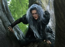 "Meryl Streep extends her lead as the most nominated performer with 19, thanks to Rob Marshall's ""Into the Woods."""