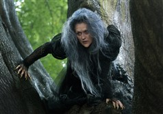 "Meryl Streep ventures ""Into the Woods"" as the Witch who wishes to reverse a curse so that her beauty may be restored."