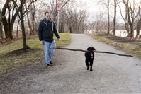 Jeff Oaks of Lawrenceville takes a walk in his neighborhood with his dog Andy on the Three Rivers Heritage Trail under the 40th Street Bridge with the dog park nearby.
