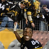 Steelers wideout Antonio Brown celebrates with fans after the team beat the Cincinnati Bengals at Heinz Field in December.